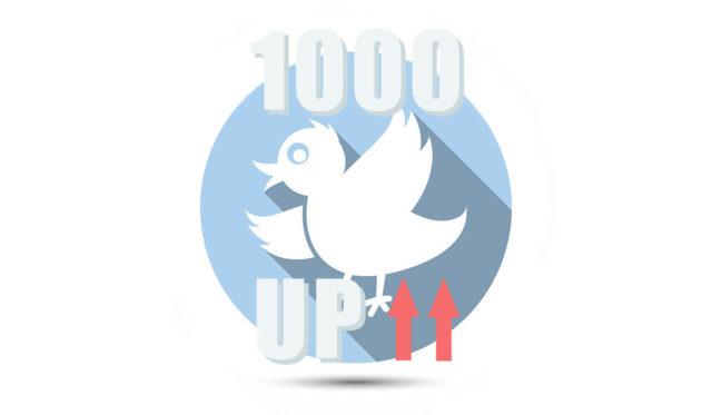 ツイッターで3週間でフォロワー1000人増やす方法【1日1時間半・相互RTなし】