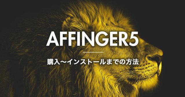 アフィンガー5の購入〜インストール方法を徹底解説【お得に購入しよう】