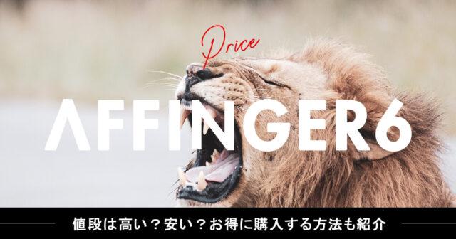 アフィンガー6(AFFINGER6)の値段は高い?安い?お得に購入する方法も紹介